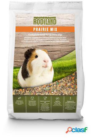 Rodiland Comida Natural para Cobaya Guinea Pig Prairie Mix 1