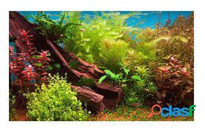 Sandimas Póster Acuario 3D Aqua Jardín