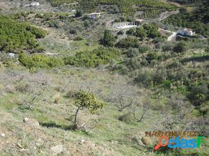Suelo rústico en Venta en Almuñecar Granada