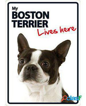 Magnet & Steel Señal A5 My Boston Terrier Lives Here 100 GR