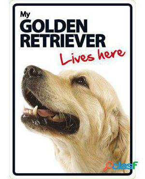 Magnet & Steel Señal A5 My Golden Retriever Lives Here 100
