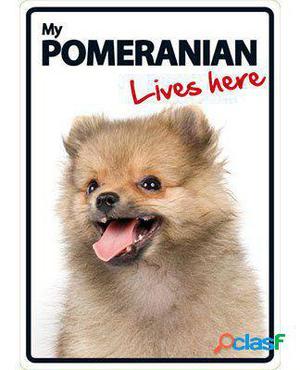 Magnet & Steel Señal A5 My Pomeranian Lives Here 100 GR