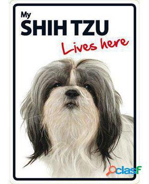 Magnet & Steel Señal A5 My Shih Tzu Lives Here 100 GR