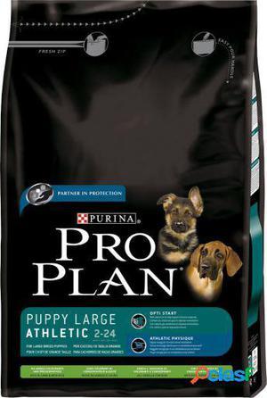 Pro Plan Puppy Atlético Grandes Razas Cordero y Arroz 3 Kg