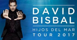 DAVID BISBAL EN TOLEDO. VENDO DOS ENTRADAS