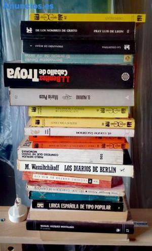 Lote De Libros Variados. Tapas Blandas.