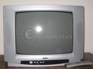 TV en color de 21
