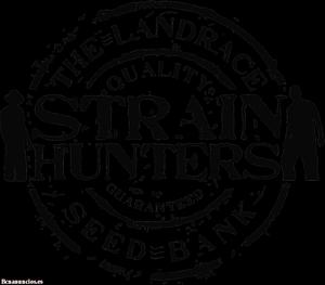 Venta de semillas marca Strain Hunters