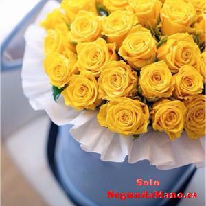 Recoger los ramos de flores vivas en cajas y cestos, juegos