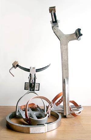 Se vende bici para poda de palmeras - Islas Baleares