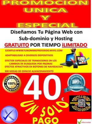 Paginas web exclusivas desde 40 euros - Valencia