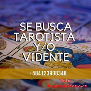 Se buscan Tarotistas y/o Videntes que residan en Venezuela.