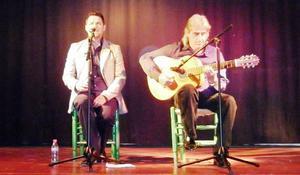 Cursos de guitarra flamenca, granada
