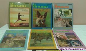 Cuentos y novelas para todo tipos de edades