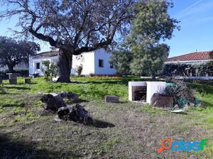 Parcela con vivienda en el Casar de Cáceres.