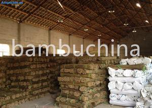 Tutor De Bambu,CañA De Bambu,Bambu Para Planta,Bambu