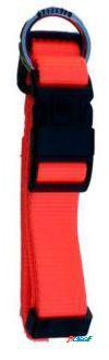 Freedog Collar Nylon Neon Naranja Fluor Para Perros 2.5 cm