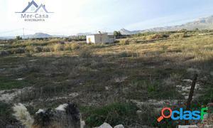 Se vende casa con parcela de 8000 metros sin vallar en Aspe