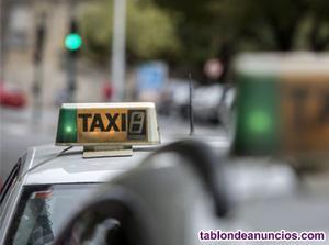 Venta licencia taxi pamplona