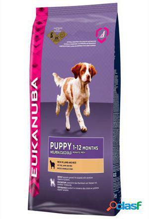 Eukanuba Pienso Puppy Cordero y Arroz Todas las Razas 12 KG