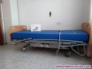 Cama articulada+colchón hipoalergénico+antiescaras