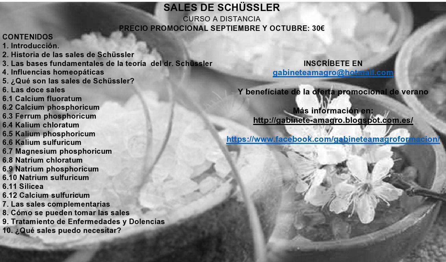 CURSO SALES DE SCHUSSLER A DISTANCIA - Madrid