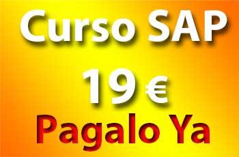 Curso SAP Introducción - Madrid