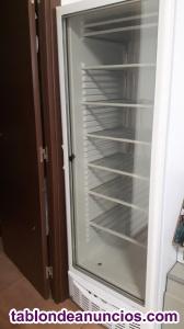 Vendo vitrina congelador hostelería