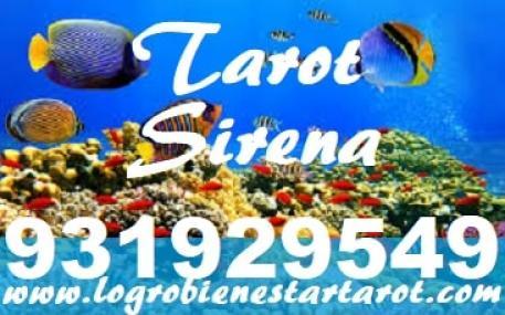 TAROT SIRENA VISA/PAYPAL  TAROT BUENO Y CERTERO