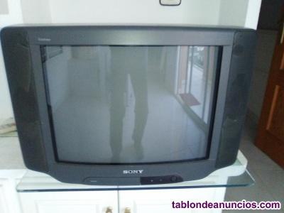 Televisor + tdt + mandos
