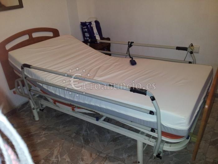 Cama ortopédica