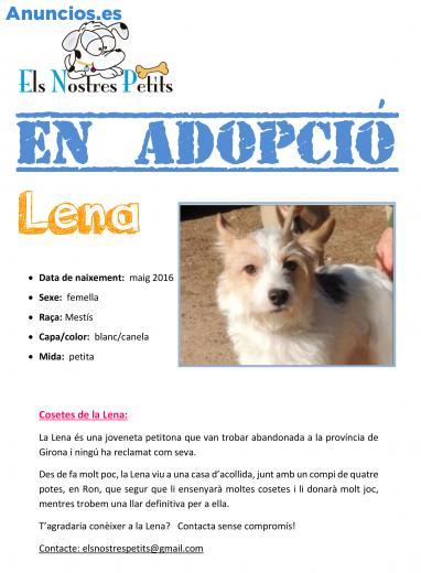 Lena Busca Una Familia En Adopcion