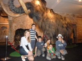Museo del mamut de barcelona - Barcelona