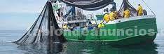Temario oposiciones inspector de pesca. Completo y
