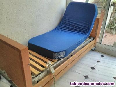 Cama de cuidados con colchón y almohada +mini grúa +silla