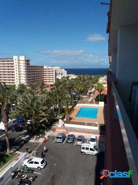 Playa Americas. Piso 1 habitacion en complejo cerrado con