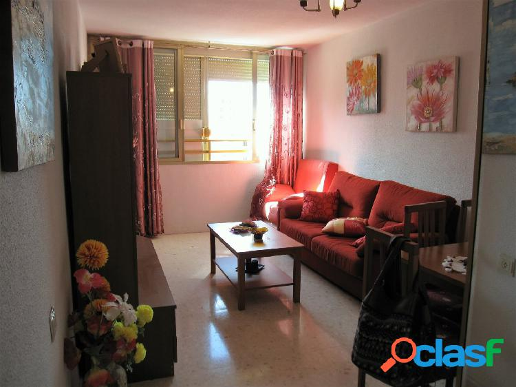 APARTAMENT ONE BEDROOM ZONA JUZGADO