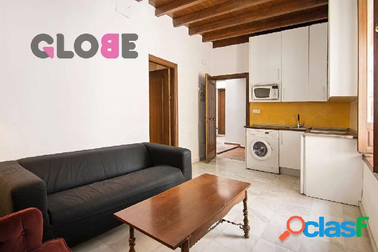 Estupendo apartamento de un dormitorio, amueblado.