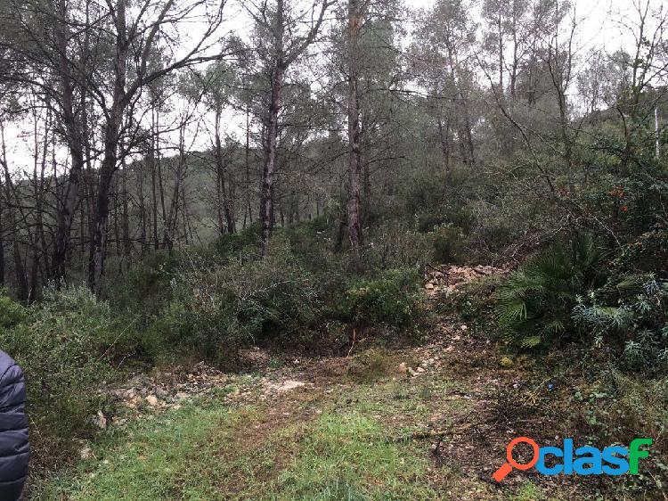 Finca Rústica en Sant Pere de Ribes Can Vinyals