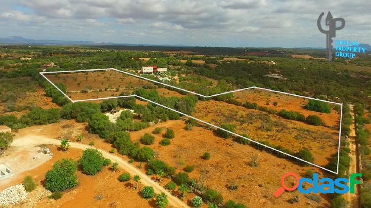 Impresionante parcela rústica de más de 24.000 m2