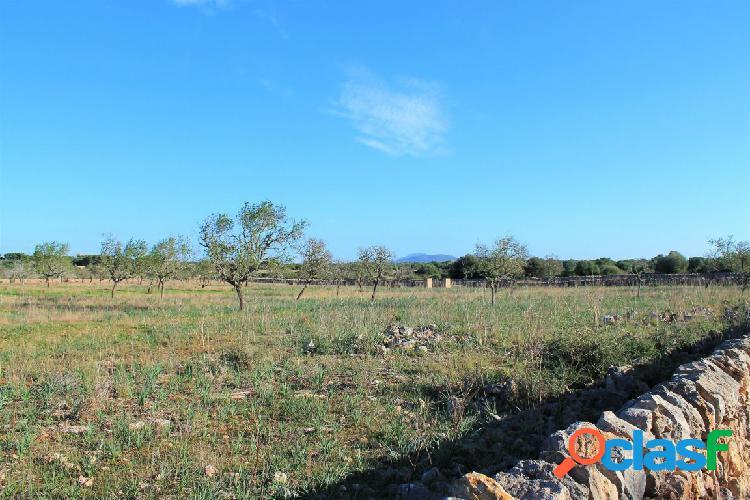 Parcela rústica de 28.000 m2 cerca del Cabo Salinas