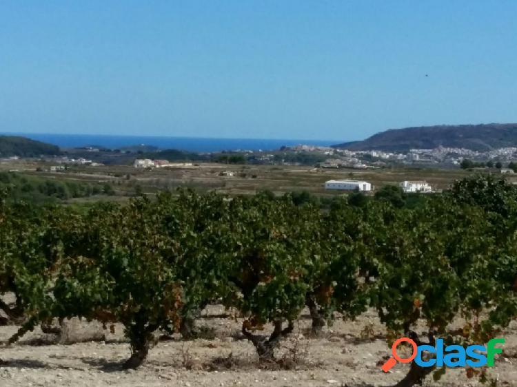 Parcela rústica en Benimarco con vistas al mar