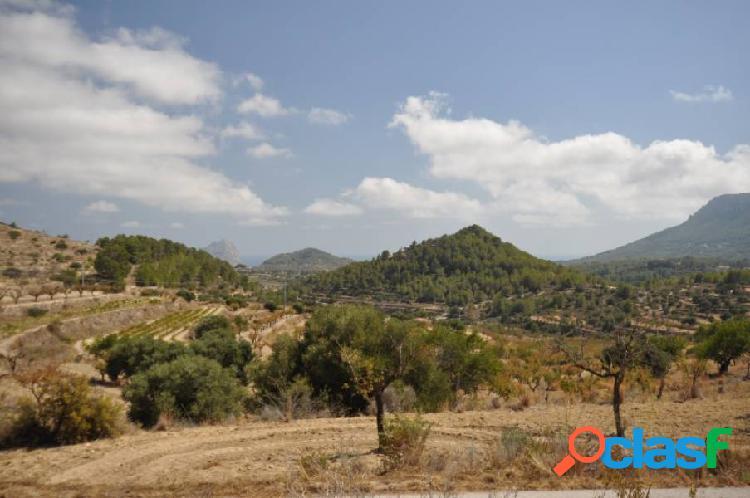 Terreno rural magnífico en una zona muy tranquila rodeado