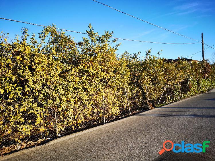Se vende parcela en La Albatalia