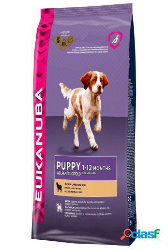 Eukanuba Pienso Puppy Cordero y Arroz Todas las Razas 1 Kg