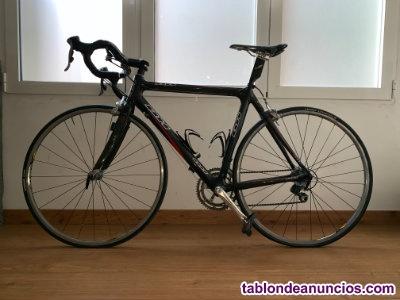 Bicicleta carbono - carretera