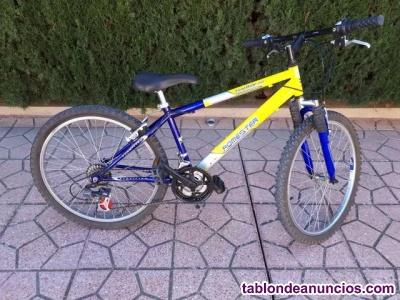 Bicicleta junior de montaña