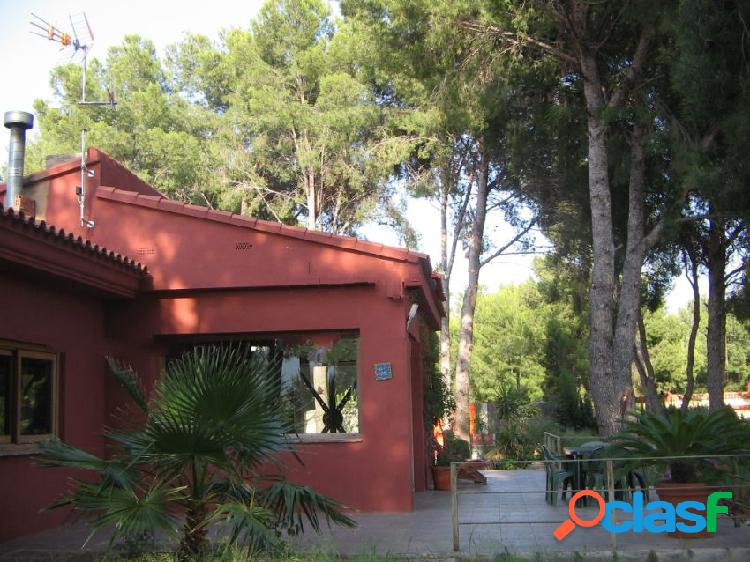 Casa o chalet independiente en venta en calle Pinos, 49,