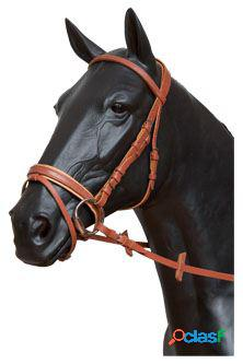 Gómez Cabezada inglesa pony Negro