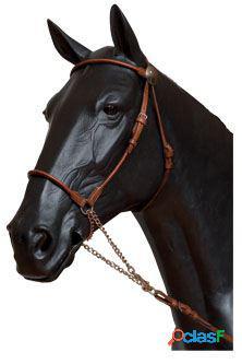 Gómez Cabezada presentación caballo árabe negro
